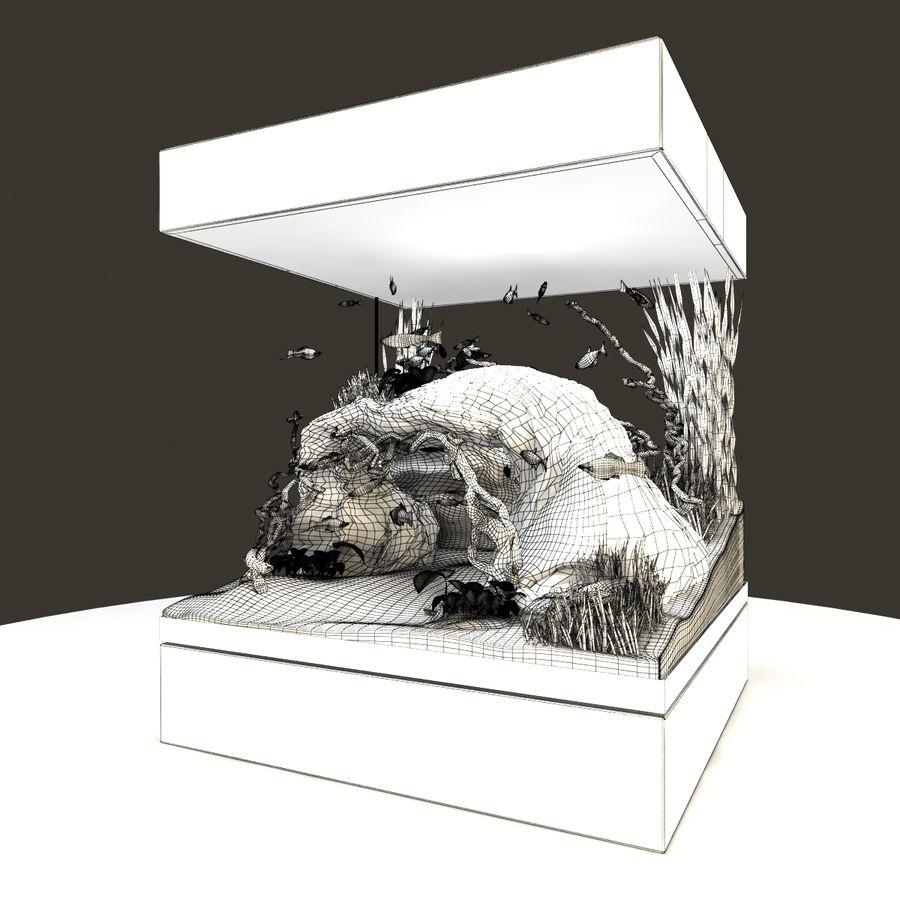 Naturalne akwarium royalty-free 3d model - Preview no. 10