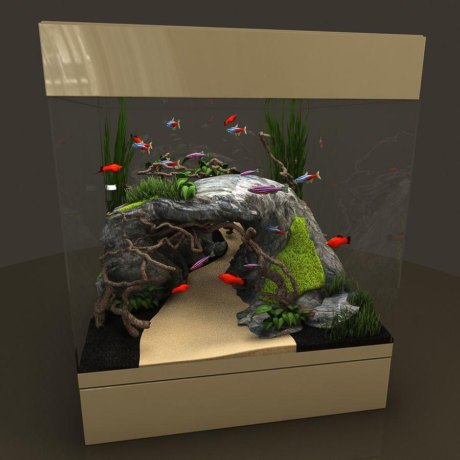 Naturalne akwarium royalty-free 3d model - Preview no. 5
