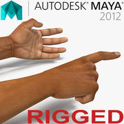 African Man Hands 2 aparejado para el modelo Maya 3D modelo 3d