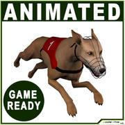 Cão galgo em tempo real 3d model