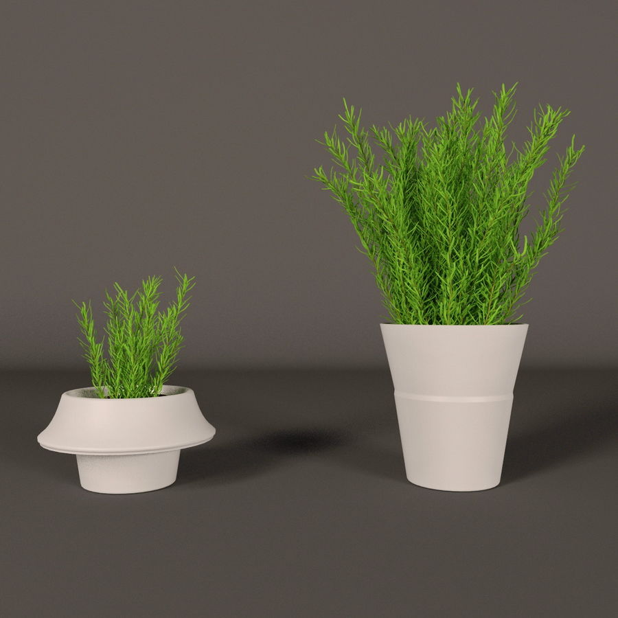 Rośliny royalty-free 3d model - Preview no. 30