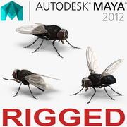 Voar equipado para Maya 3d model