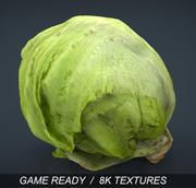 Laitue iceberg 3d model