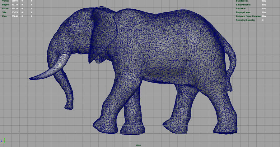 African Elephant royalty-free 3d model - Preview no. 12