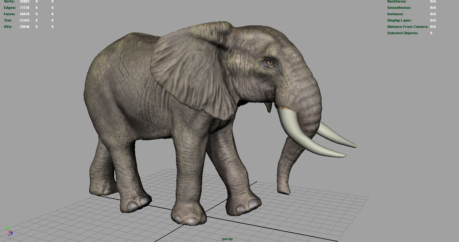Afrikansk elefant royalty-free 3d model - Preview no. 6