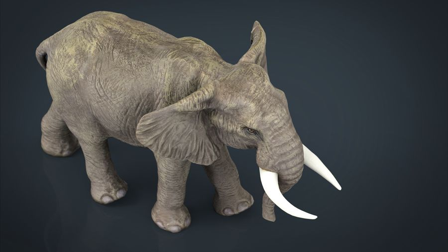 Afrikansk elefant royalty-free 3d model - Preview no. 5