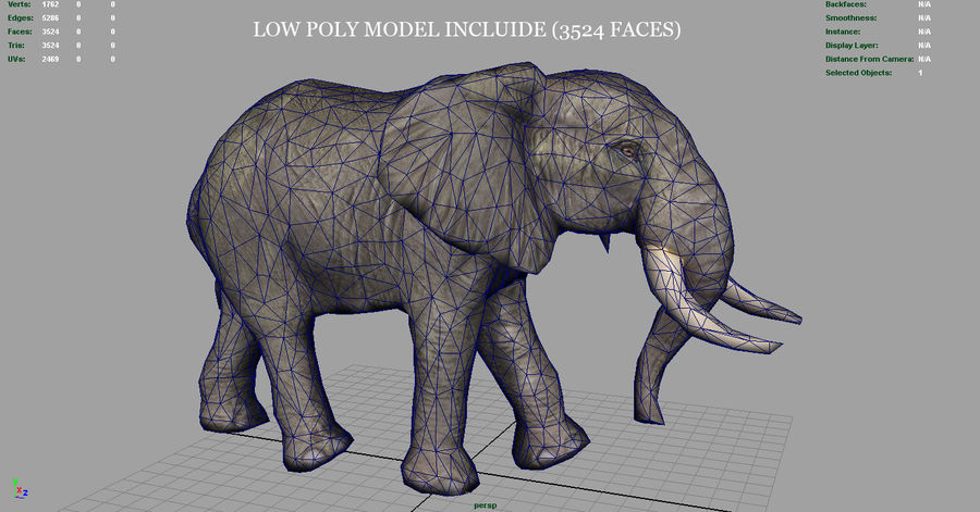 African Elephant royalty-free 3d model - Preview no. 14