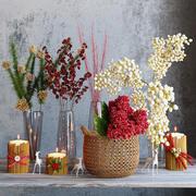 Vintern blommor uppsättning 3d model