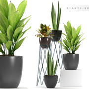 planta 80 modelo 3d