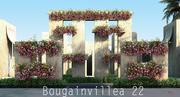 Бугенвиллия 22 3d model