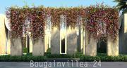 Бугенвиллия 24 3d model