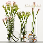 callalilly 3 3d model
