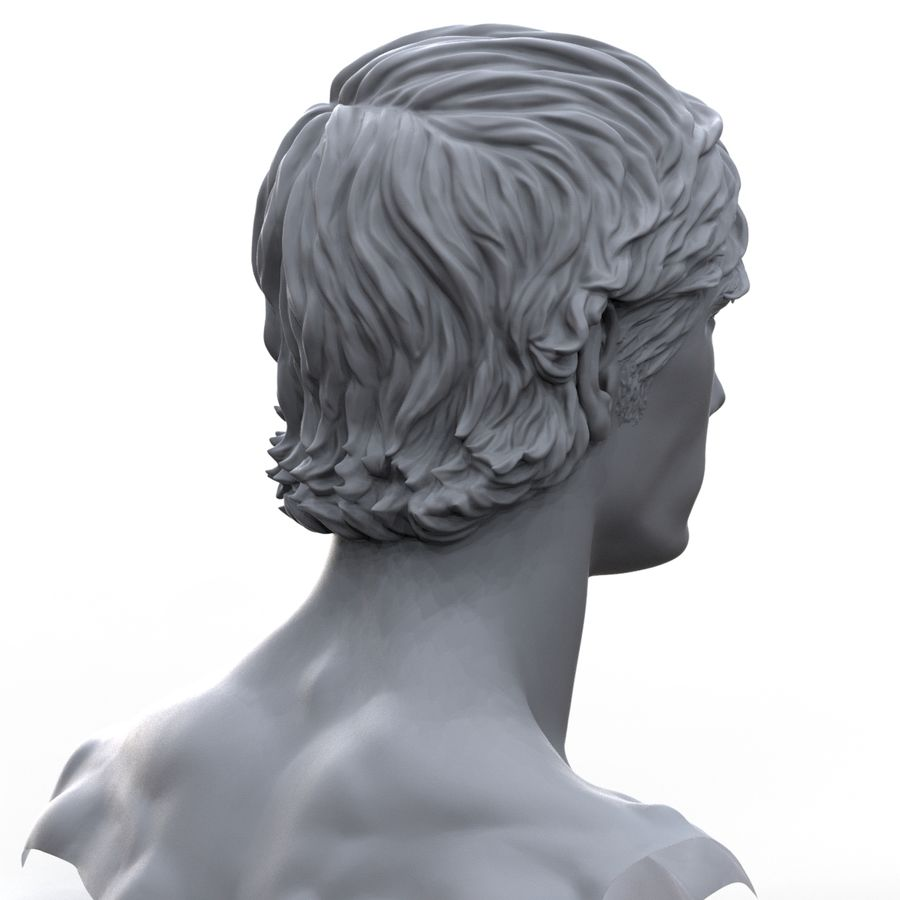 hayvanca royalty-free 3d model - Preview no. 7