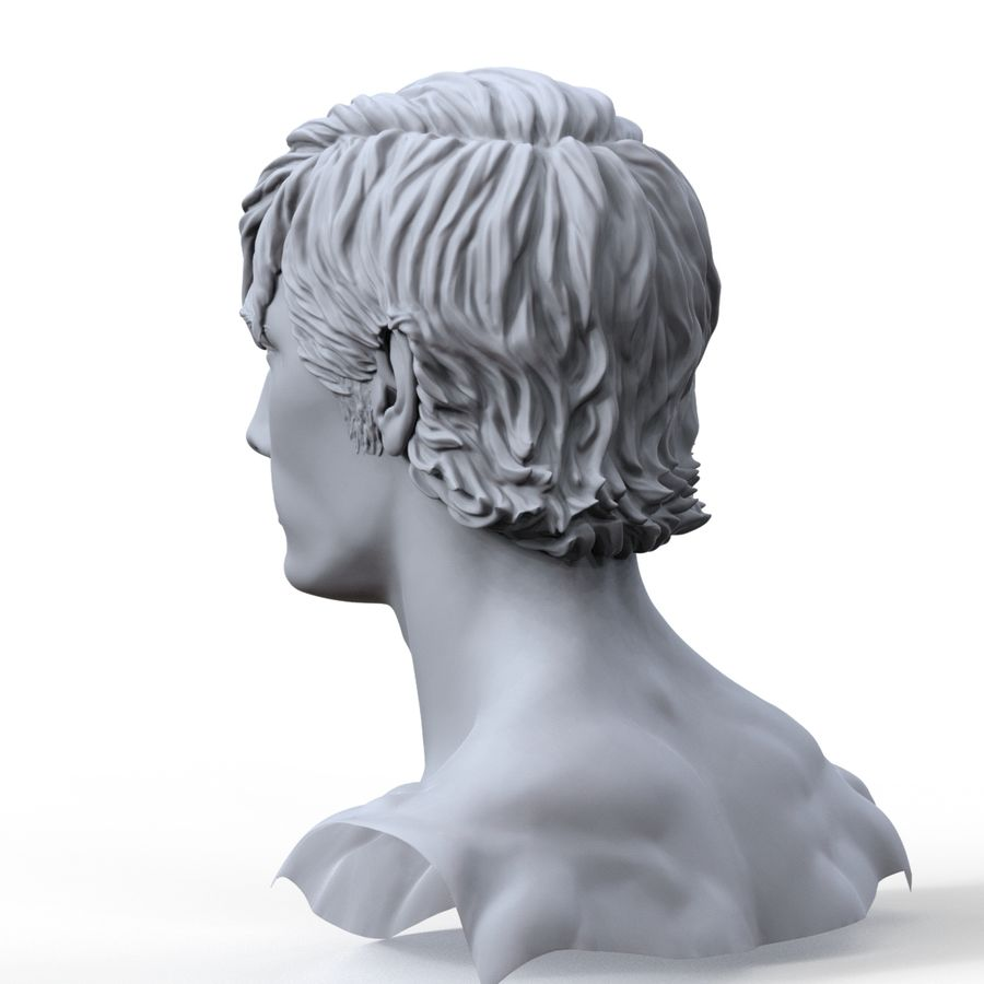 hayvanca royalty-free 3d model - Preview no. 9