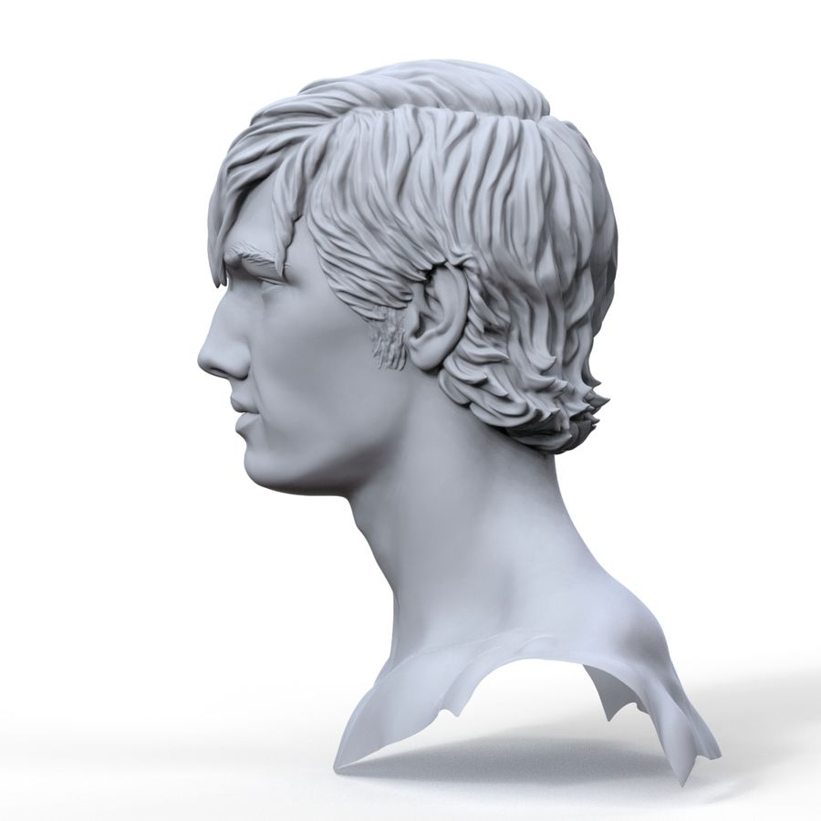 hayvanca royalty-free 3d model - Preview no. 10