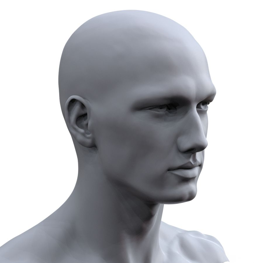 hayvanca royalty-free 3d model - Preview no. 14
