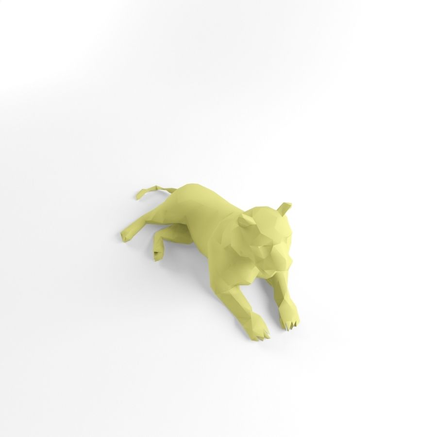 Tiger and Lion Low Poly Mammal Wild Africa Animal Lowpoly royalty-free 3d model - Preview no. 7