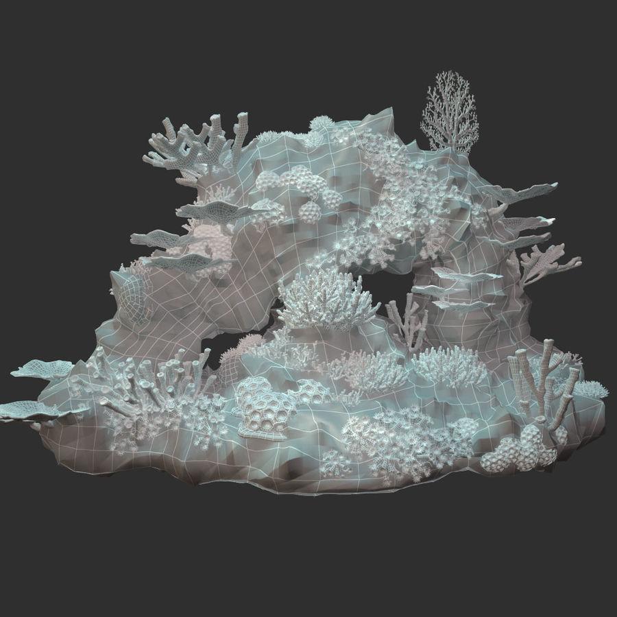 코랄 리프 royalty-free 3d model - Preview no. 14