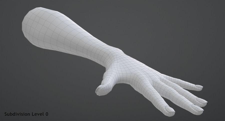 Vrouwelijke hand royalty-free 3d model - Preview no. 10