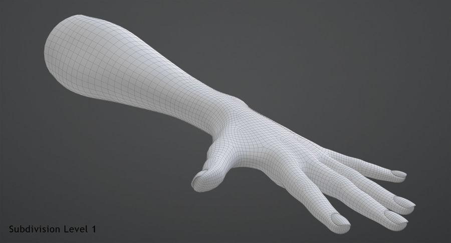 Vrouwelijke hand royalty-free 3d model - Preview no. 11