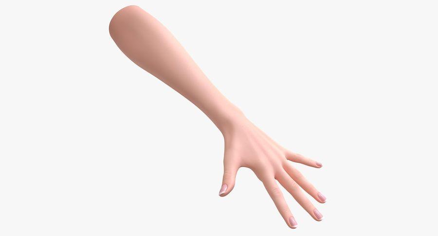 Vrouwelijke hand royalty-free 3d model - Preview no. 2
