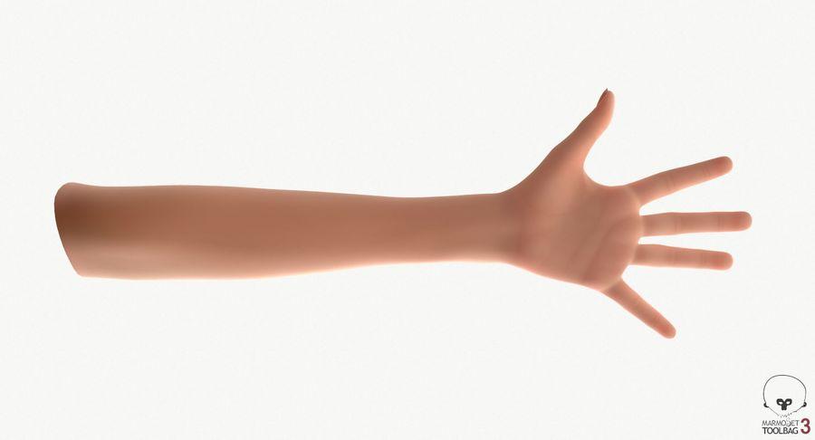 Vrouwelijke hand royalty-free 3d model - Preview no. 19