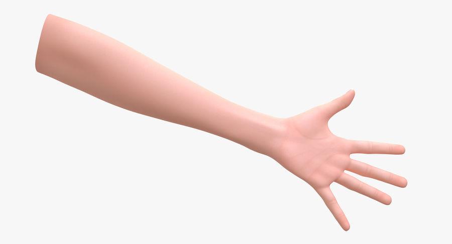 Vrouwelijke hand royalty-free 3d model - Preview no. 6