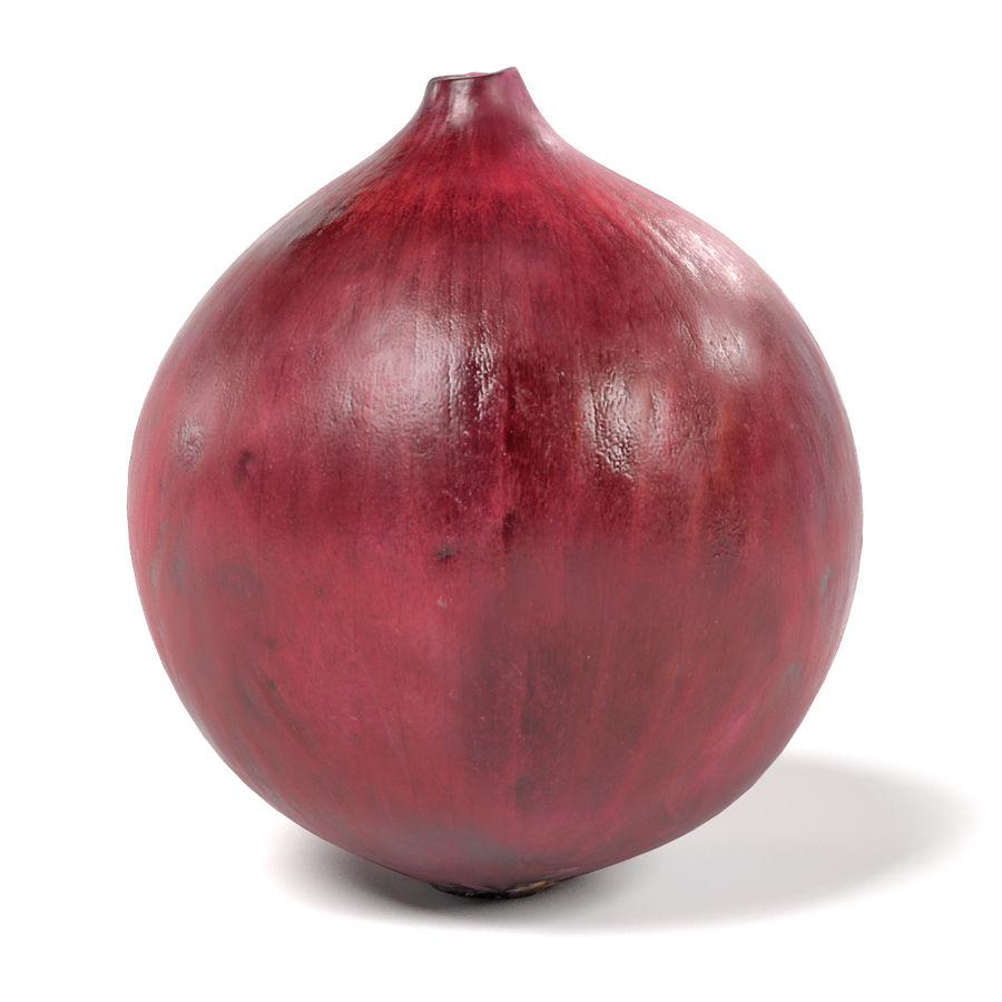 Red Onion royalty-free 3d model - Preview no. 2