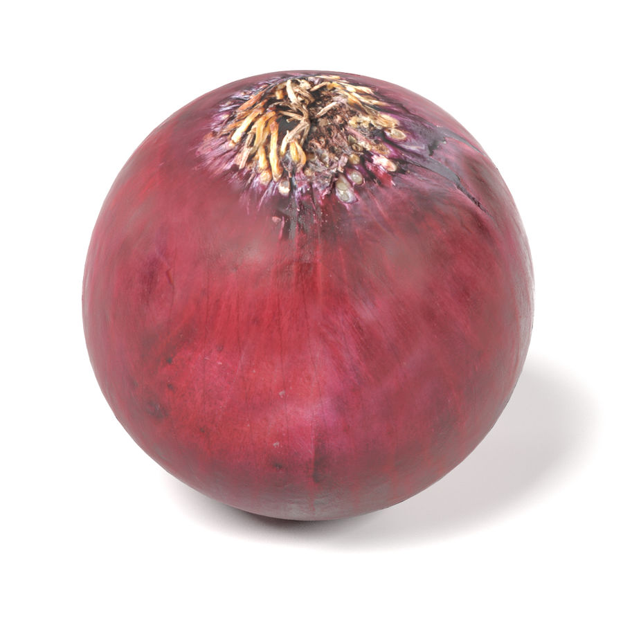 Red Onion royalty-free 3d model - Preview no. 7