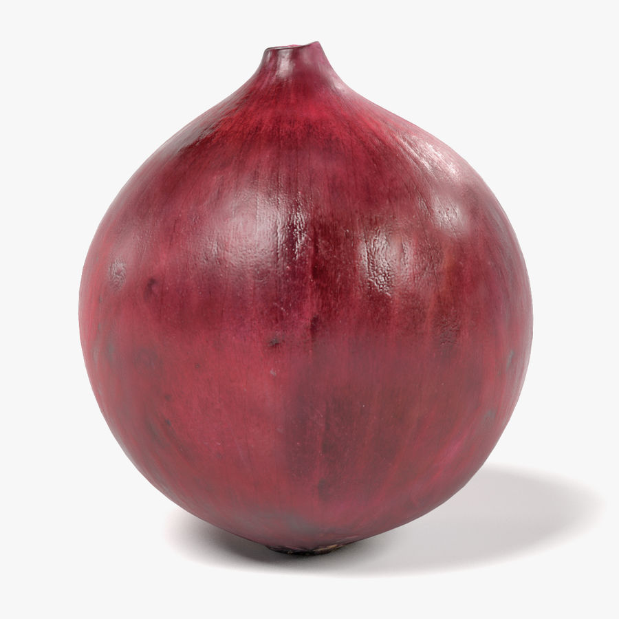 Red Onion royalty-free 3d model - Preview no. 1