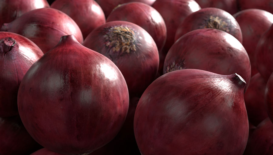 Red Onion royalty-free 3d model - Preview no. 3