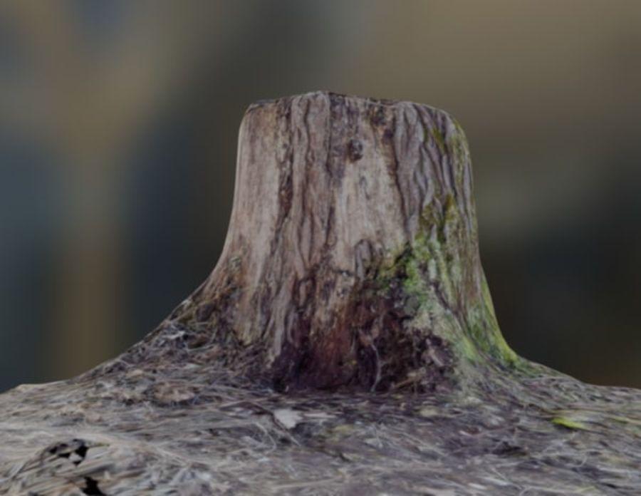 Coto de Woden royalty-free 3d model - Preview no. 3