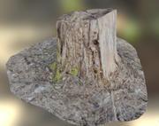 Coto de Woden 3d model