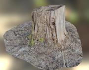 Woden stump 3d model