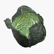 Savoy cabbage 3d model