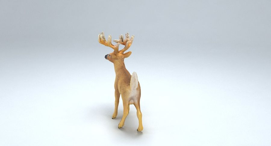 Cerf royalty-free 3d model - Preview no. 9