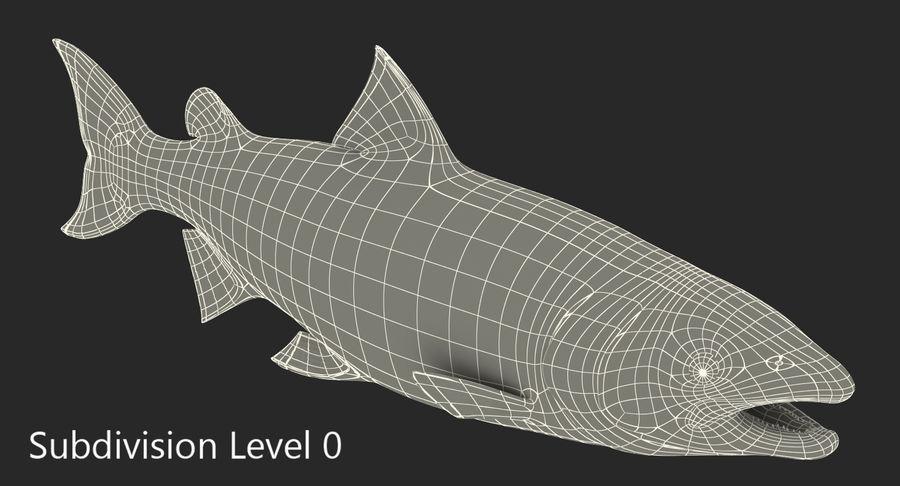 Pesce Salmone Atlantico royalty-free 3d model - Preview no. 13