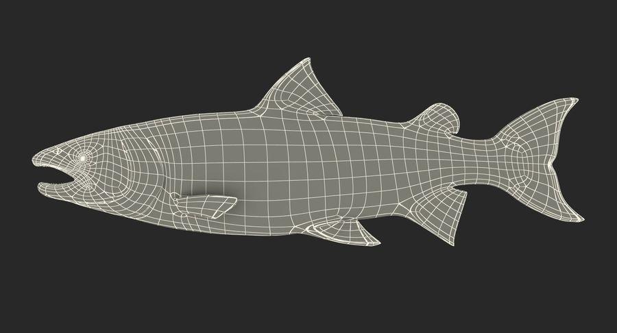 Pesce Salmone Atlantico royalty-free 3d model - Preview no. 20