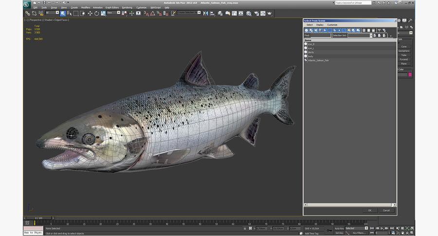 Pesce Salmone Atlantico royalty-free 3d model - Preview no. 17