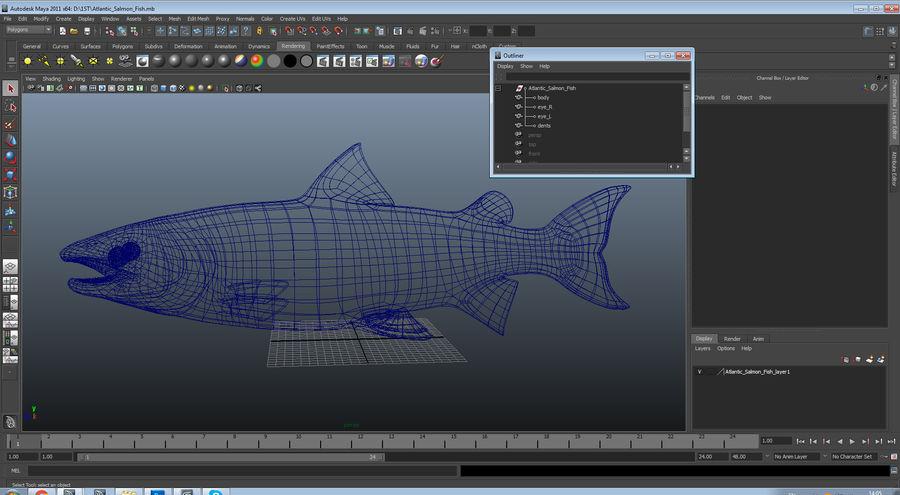 Atlantic Salmon Fish royalty-free 3d model - Preview no. 19