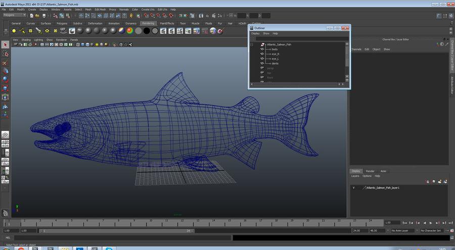 Pesce Salmone Atlantico royalty-free 3d model - Preview no. 19