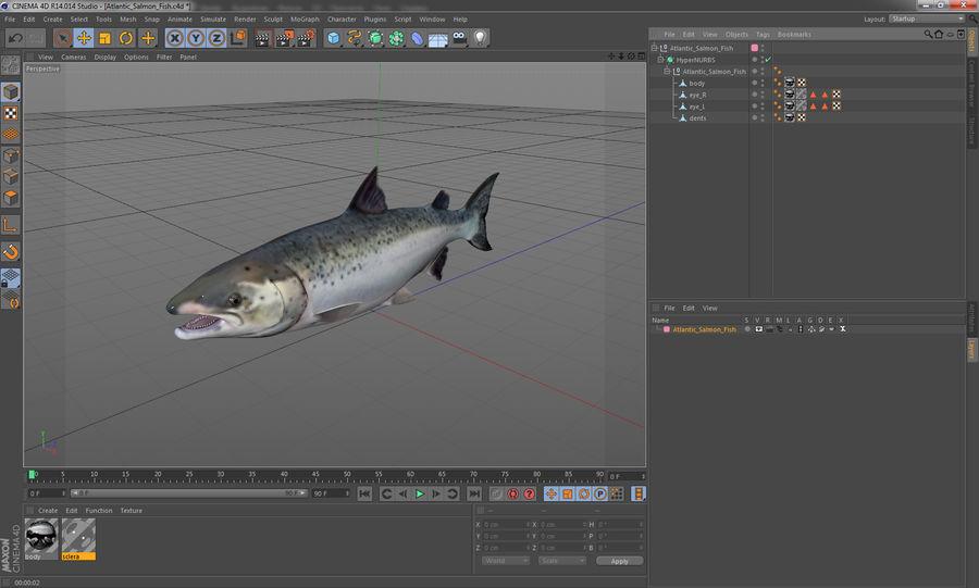 Pesce Salmone Atlantico royalty-free 3d model - Preview no. 18