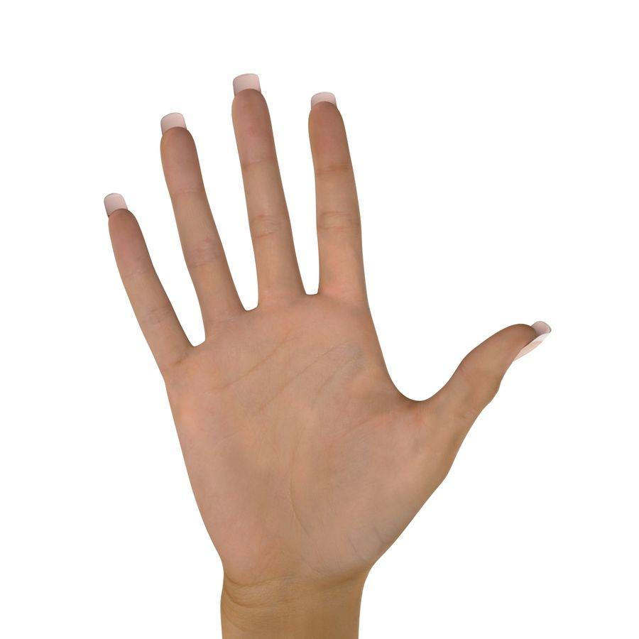 Main femelle truquée pour Maya royalty-free 3d model - Preview no. 35