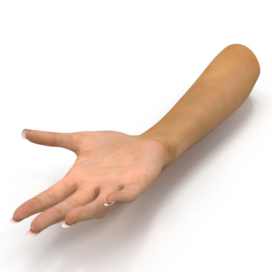Main femelle truquée pour Maya royalty-free 3d model - Preview no. 2