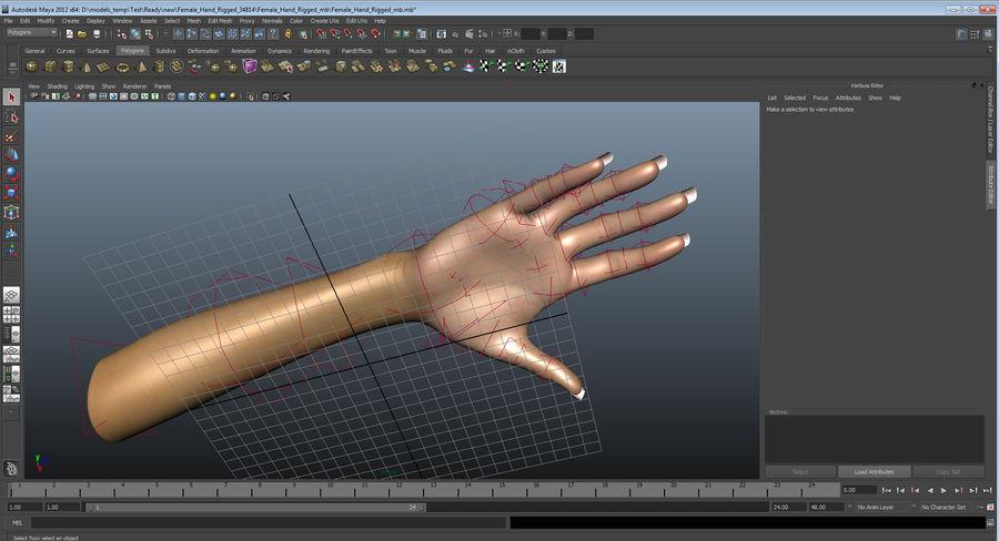 Main femelle truquée pour Maya royalty-free 3d model - Preview no. 40