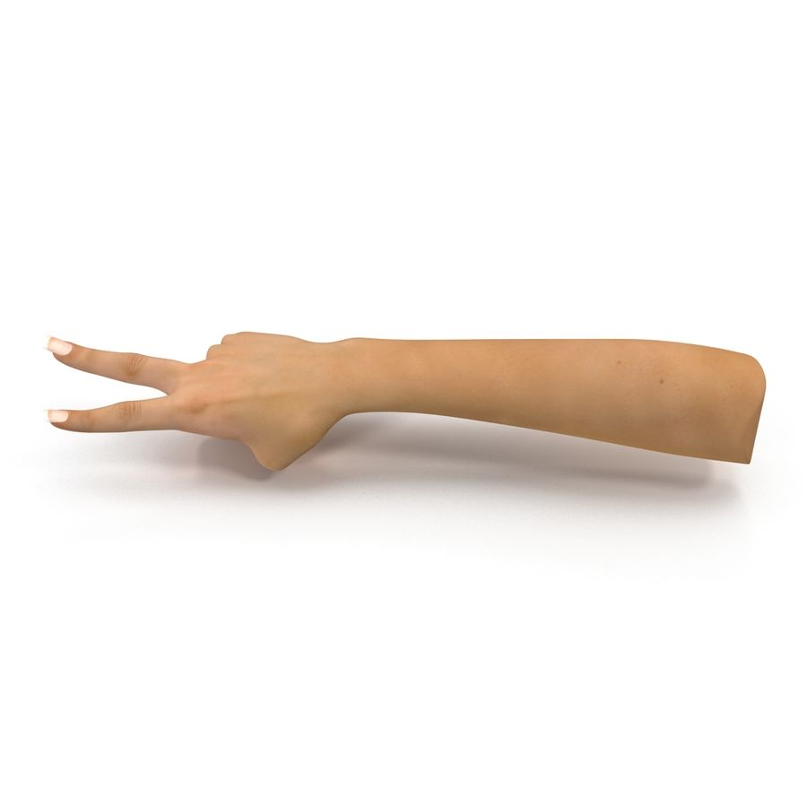 Main femelle truquée pour Maya royalty-free 3d model - Preview no. 15