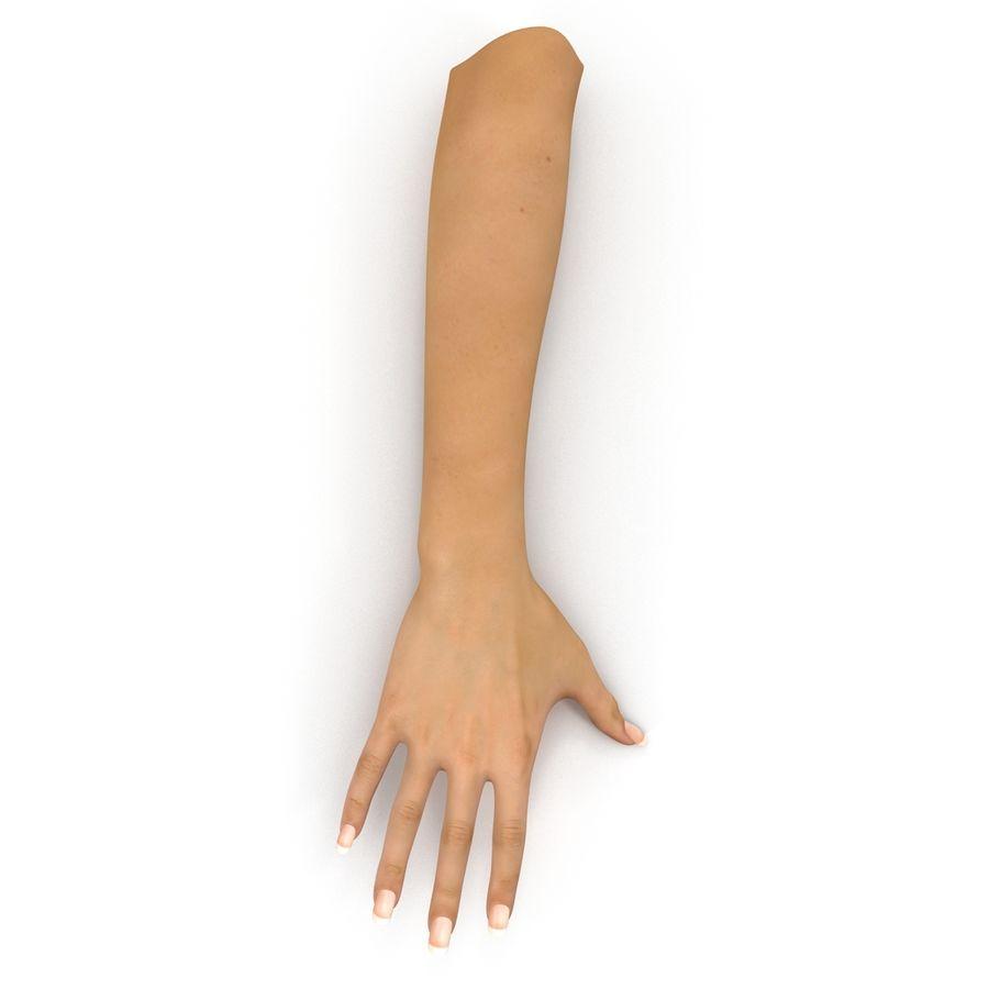 Main femelle truquée pour Maya royalty-free 3d model - Preview no. 3