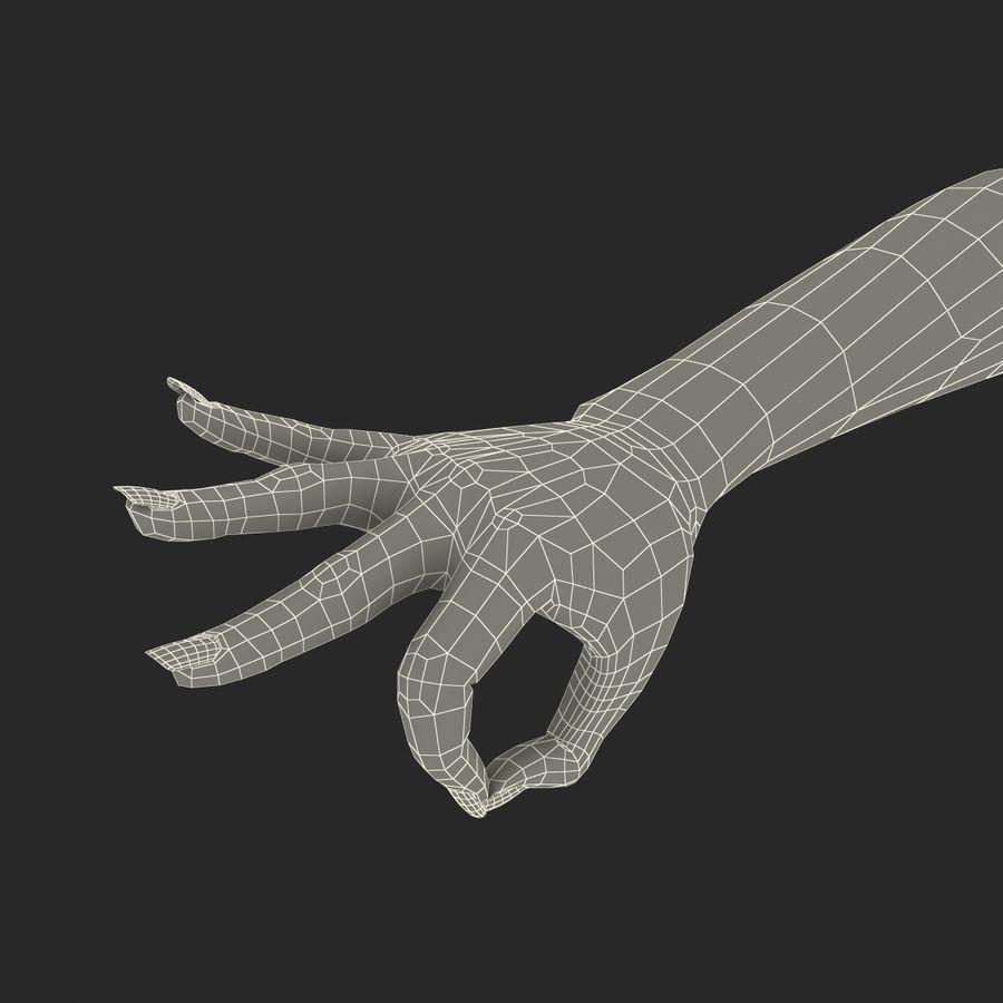 Main femelle truquée pour Maya royalty-free 3d model - Preview no. 48