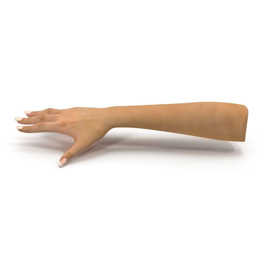 Main femelle truquée pour Maya royalty-free 3d model - Preview no. 16
