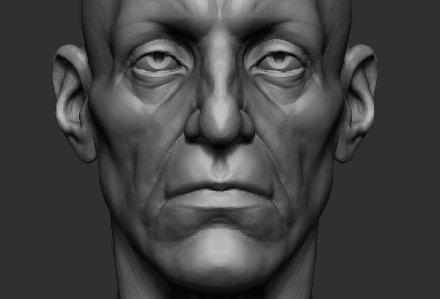 Anatomie de la base de la tête masculine royalty-free 3d model - Preview no. 5